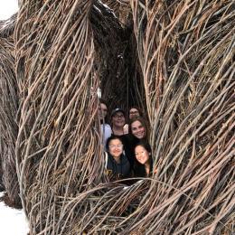 Victoria Girgis, Kathryn Tellez, Adriana Weise, Madelyn Hart, Hailey Osborn, Ariel Daniel pose inside tree art structure