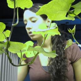 Lunar Greenhouse Story with Erica Hernandez